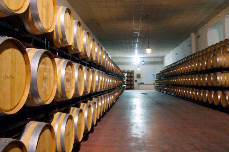 yuntero-winery