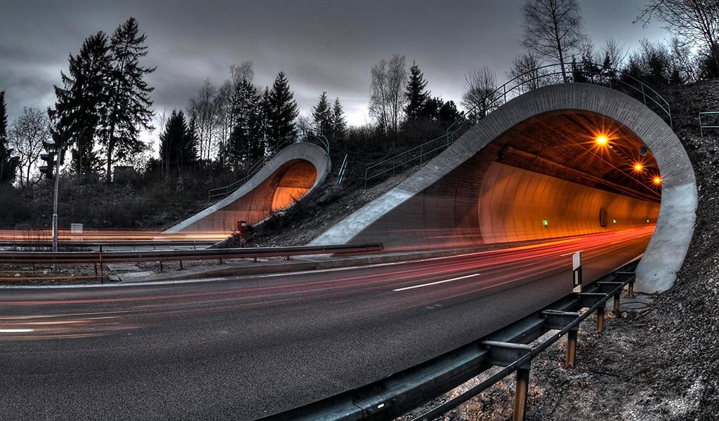 Interlomas Tunnels